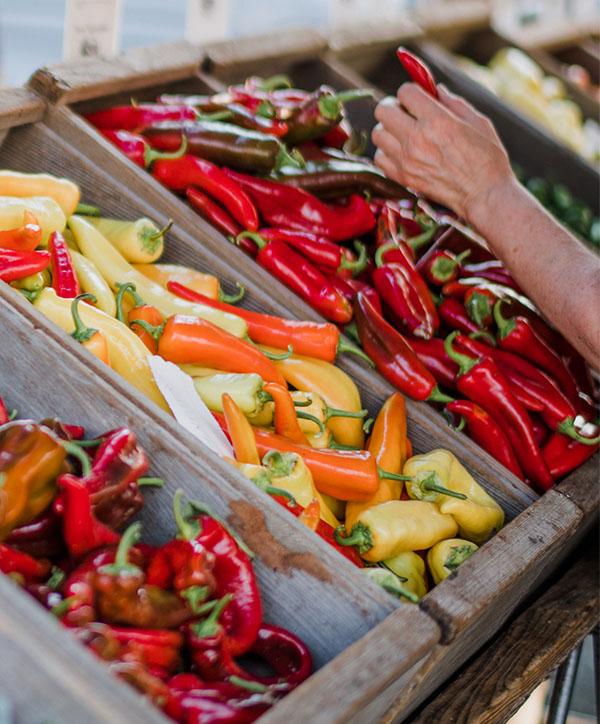 Tienda online de productos canarios